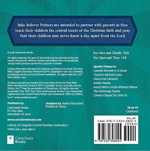 Bible Basics Board Book Seeds Family Worship